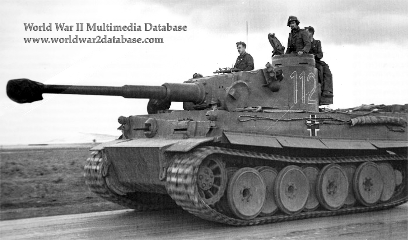 Tiger 112 Of Schwere Panzer Abteilung 501 In Tunisia The